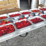 Farmers Market hosts tomato tasting
