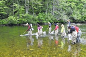 Surry's Excellence in Teaching Award recipient leads adventurous course