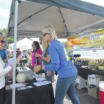 A 'chamber of commerce day' for Grape Fest