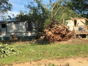 Courtney community cleans up after tornado damage